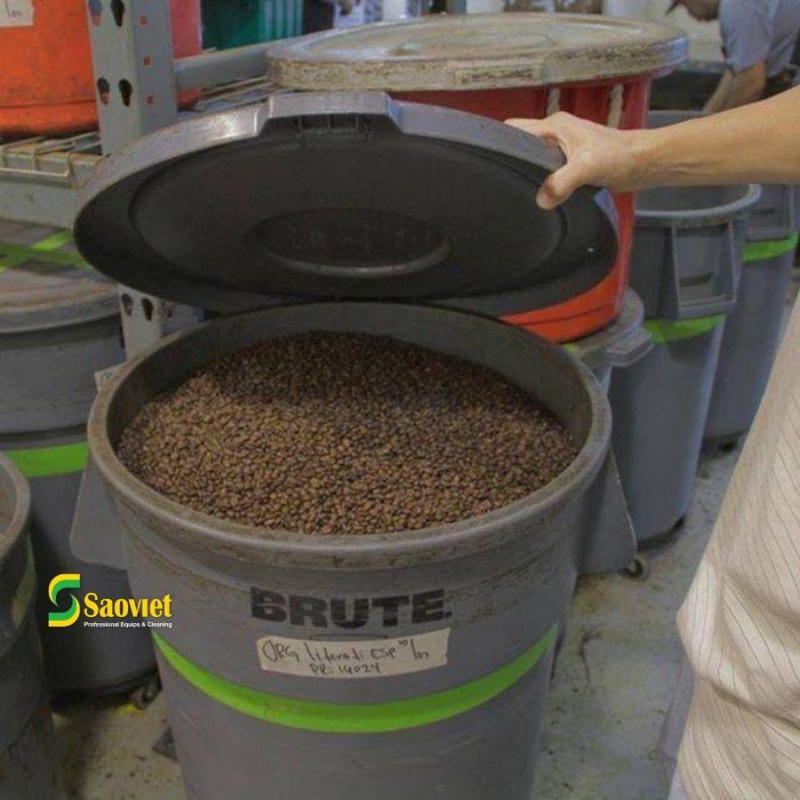 brute đựng cà phê