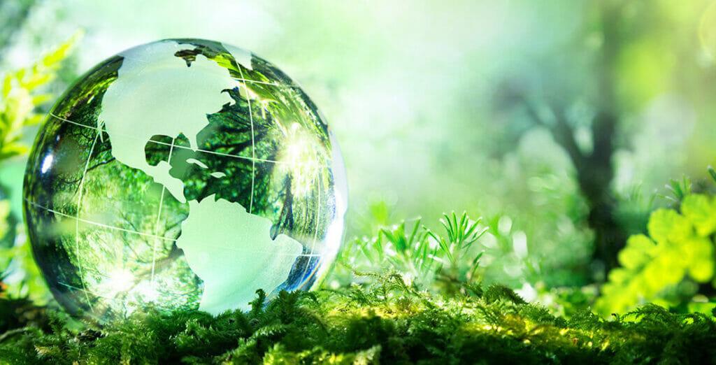 cách bảo vệ môi trường hiệu quả